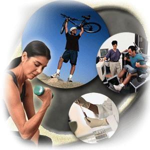Curso Gratis de Deportes Educacion Fisica