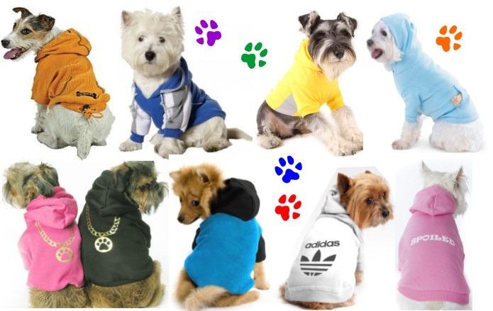Curso Ropa Mascotas Vestuario Canino