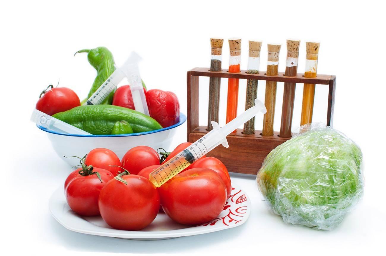 Curso de Alimentos Transgenicos