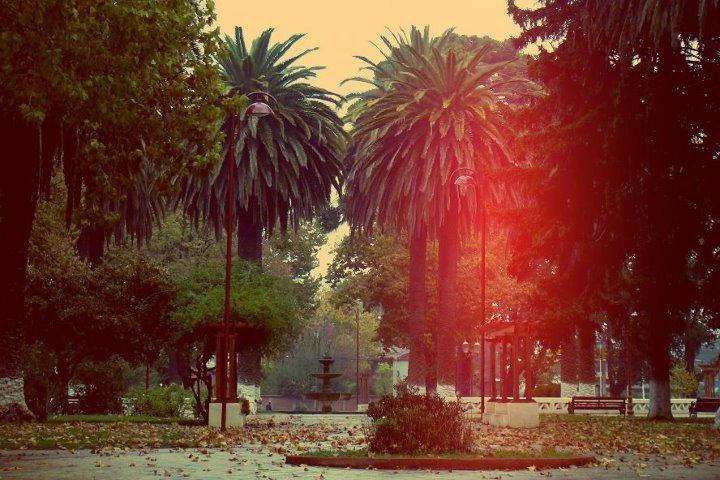 Plaza Parral