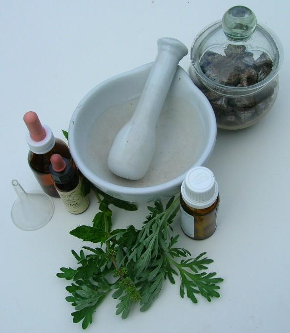 Curso gratis plantas medicinales
