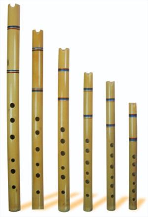 Curso Instrumento Musica Quena profesional