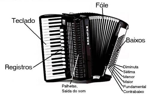 partes_del_acordeon