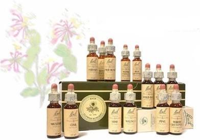Terapia con Flores de Bach KIT