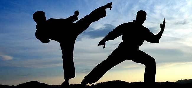 Curso gratis de Karate-Do