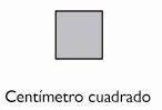 CENTÍMETRO CUADRADO