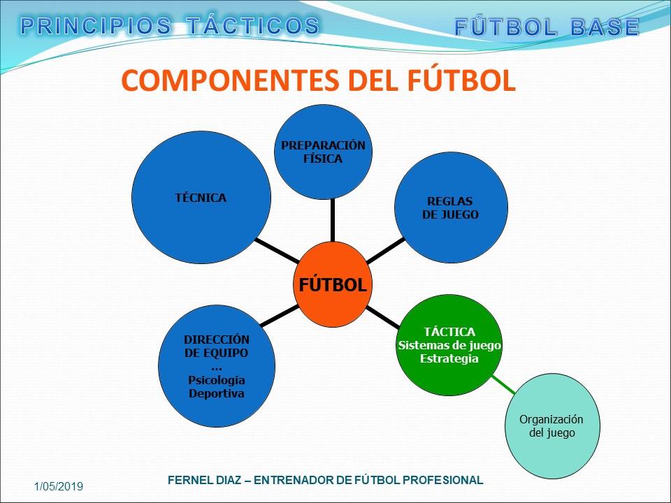 Principios Tacticos Futbol en Curso Iniciacion